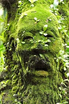 green man~It is interesting isn't it....