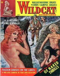"""Wildcat Adventures: Hey...is that Cedric Diggory's dad in the background? """"It's a port key! Her left boob is a port keyyyy!"""""""