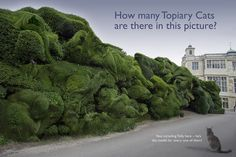 The Topiary Cat Audley End Puzzle | Just for fun, how many T… | Flickr