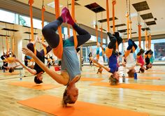 Aerial Yoga Vs Usual Practice - What's The Difference? AntiGravity Yoga is a relatively new kind of workout invented by aerial performer Christopher Harrison. It involves an exercise inspired by yoga,. 2 Week Workout Plan, Weekly Workout Plans, Group Fitness Classes, Fitness Studio, All Over Body Workout, Anti Gravity Yoga, Yoga For You, Aerial Yoga, Aerial Acrobatics