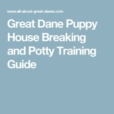 Great Dane Puppy House Breaking and Potty Training Guide