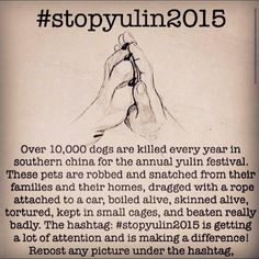 For the love of God, please stop this sickness!!  I have signed a couple petitions against this.  Lord have mercy. I pray for these dogs and this ends for good. #stopyulin2015
