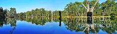 http://fineartamerica.com/featured/river-panorama-and-reflections-kaye-menner.html