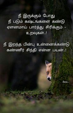 Life Failure Quotes, Art Quotes, Life Quotes, Tamil Love Quotes, True Words, Proverbs, Poems, Thoughts, Motivation