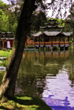 Park Jipiro - Loja - Ecuador