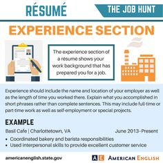 Vocabulary: The Job Hunt - Résumé - Experience Section