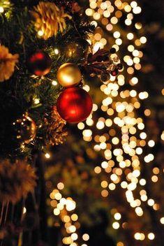 A iluminação de Natal é um dos elementos mais mágicos da quadra, pois, são as luzes natalinas – coloridas ou todas brancas – que conferem um brilho único e muito especial à árvore… mas não só. Existem várias e originais formas de decorar com luzes de Natal, além do pinheiro, por isso, ilumine-se! 1. Luzes de vidro