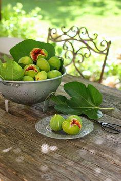 Figues vertes toutes fraîches