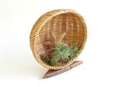 Vintage Round Display Basket with Bamboo Stand, Wicker Decor, Retro Basket, Air Plant Holder by FoxLaneVintage on Etsy Unique Vintage, Retro Vintage, Eclectic Decor, Air Plants, Wicker, Bamboo, Basket, Decor Ideas, Display