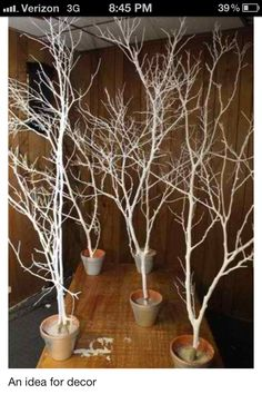 A bag of quick drying cement, some branches, couple cans of white spray paint, add some twinkle lights and you've got the makings of a mini fairytale forest