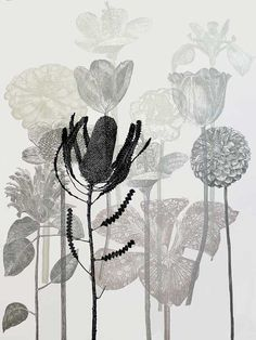 Dianne Fogwell : 21 August - 9 September 2014 Linocut