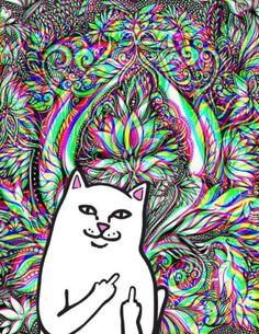 32 Best Ripndip Images Ripndip Wallpaper Iphone Wallpaper