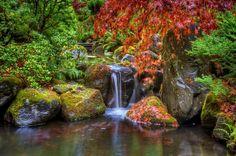 jardin japonais et cascades d'un petit ruisseau