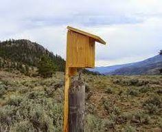 Colorado Bluebird Project Blue Bird, Bird Houses, Colorado, Building, Outdoor Decor, Projects, Home Decor, Log Projects, Aspen Colorado