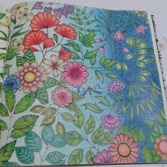 By Juliana Bernal - Jardim Secreto - Secret Garden - Johanna Basford
