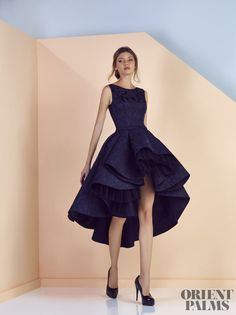Divina by Edward Arsouni Spring-summer 2017 - Ready-to-Wear High Low Gown, High Low Prom Dresses, Short Bridesmaid Dresses, Formal Dresses, Little Dresses, Pretty Dresses, Couture Dresses, Fashion Dresses, Outfit Vestidos