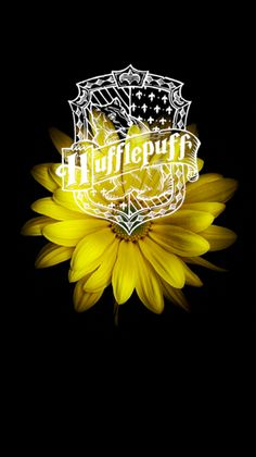 Hufflepuff Pride, Ravenclaw, Photowall Ideas, Harry Potter Stories, Ron And Hermione, Crests, Hogwarts, Photo Wall, Collage