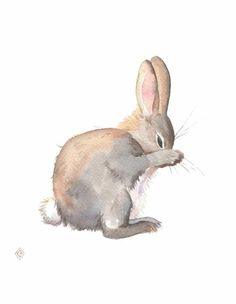 Watercolor Walls, Watercolor Animals, Watercolor Paintings, Abstract Paintings, Oil Paintings, Landscape Paintings, Watercolour, Rabbit Drawing, Rabbit Art