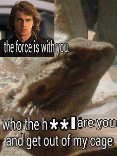 He hates star wars