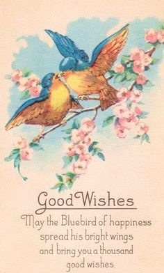 """""""Good Wishes: May the bluebird of happiness spread his bright wings and bring a thousand good wishes."""""""