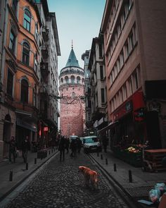 One of the most emblematic sights of the Istanbul skyline is no doubt the incredible Galata Tower! Climb to the top for amazing panoramic views of the Golden Horn and the Bosphorus, on a clear day you can even see the Prince Islands! ⠀