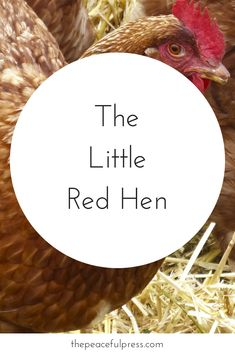 Using the little red hen in your playful, gentle homeschool. Charlotte Mason, Homeschool, Homeschooling Charlotte Mason Preschool, Waldorf Education, early learning activities, homeschooling encouragement, simple life, preschool, #homeschooling #waldorf #charlottemason #simplelife #preschool #montessori
