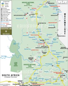 The more arid northern region of the Park is covered by the mopane shrub and is traversed by the Letaba and Olifants rivers, in which over half the Park's hippo population reside. The map for this area extends from the Phalaborwa gate up to Bateleur and Shingwedzi and encompasses the Mopani and Letaba restcamps, where elephants can be spotted on the banks of the Great Letaba River. Worthwhile excursions include the Nyawutsi and Kanniedood Bird Hides, and the Masorini Archaeological Site.