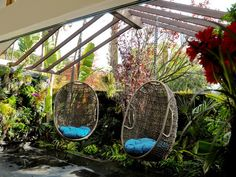 Pergolas and nest chairs