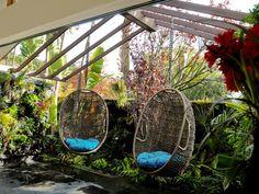 Pergola patio outdoor living via apt therapy