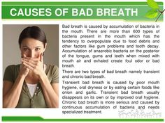 If you are like most people, you simply want to get rid of bad breath FAST! Read on to learn about seven super effective natural cures for bad breath. Chronic Bad Breath, Causes Of Bad Breath, Peyronies Disease, Bad Breath Remedy, Slimming Pills, Cellulite Remedies, Best Oral, Lose Weight Naturally