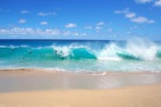 Learn How Ocean Currents Drive the World's Climate: Ocean currents drive the water of the world ocean.