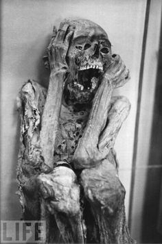 real life mummy inspiration