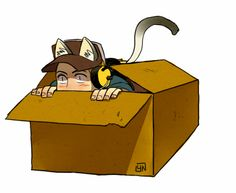 nicca11y:   as you see,cats love boxes. - FYI, I'm Not a Spy