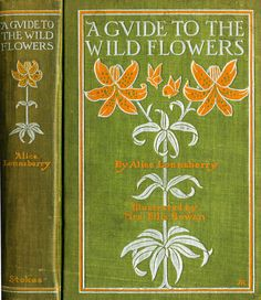 Amy Richards--Lounsberry, Alice--Guide to the Wild Flowers--Stokes, 1899 | Flickr - Photo Sharing!