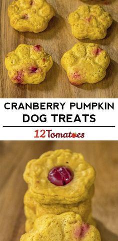 Cranberry Pumpkin Dog Treats