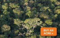 Buy an Acre