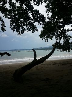 Trip to underground river, beach, Palawan