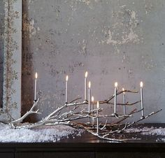 Manzanita Branch Menorah, gorgeous!