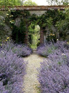 lavender walk to the secret garden Beautiful Flowers Garden, Beautiful Gardens, Landscape Design, Garden Design, Path Design, Design Ideas, The Secret Garden, Garden Cottage, Garden Gates