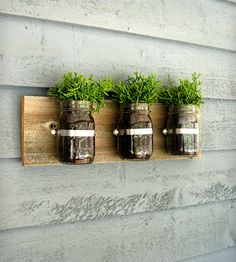 Mason Jar Wall Organizer – Perfect for herbs in the kitchen