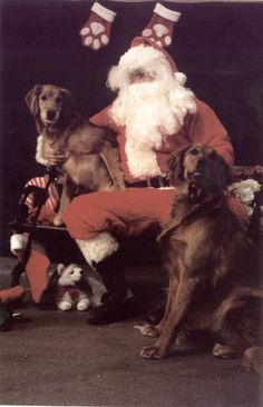 """We've been very good girls, Santa.  We rescued a """"peep"""" from a furless house!"""