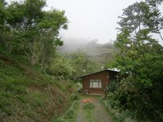 My home for now in Puriscal Costa Rica. Atlanta Georgia, Nature Pictures, Costa Rica, Country Roads, Birds, Cabin, House Styles, Flowers, Home Decor