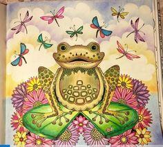 Frog Enchanted Forest Sapo Floresta Encantada Johanna Basford