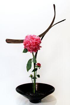 Ikebana #flowers