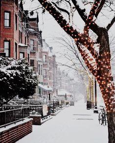 pretty lights in the snow @dcbarroso