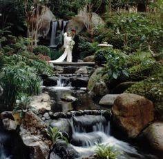 beautiful maui wedding