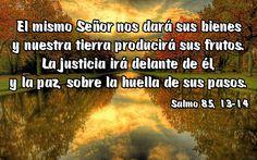 El mismo Señor nos dará sus bienes y nuestra tierra producirá sus frutos. La justicia irá delante de él, y la paz, sobre la huella de sus pasos. (Salmo 85, 13-14)