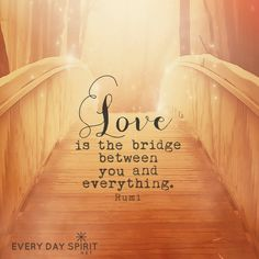 Love bridges and bonds, links and binds our hearts with all other beings. We can build bridges of love today ~ <3