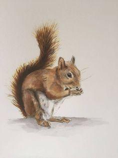 Dessin aquarellé Fox, Animals, Watercolor Drawing, Animales, Animaux, Animais, Foxes, Animal