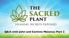 The Sacred Plant  Healing Secrets Exposed   Q&A with John and Corinne Ma...
